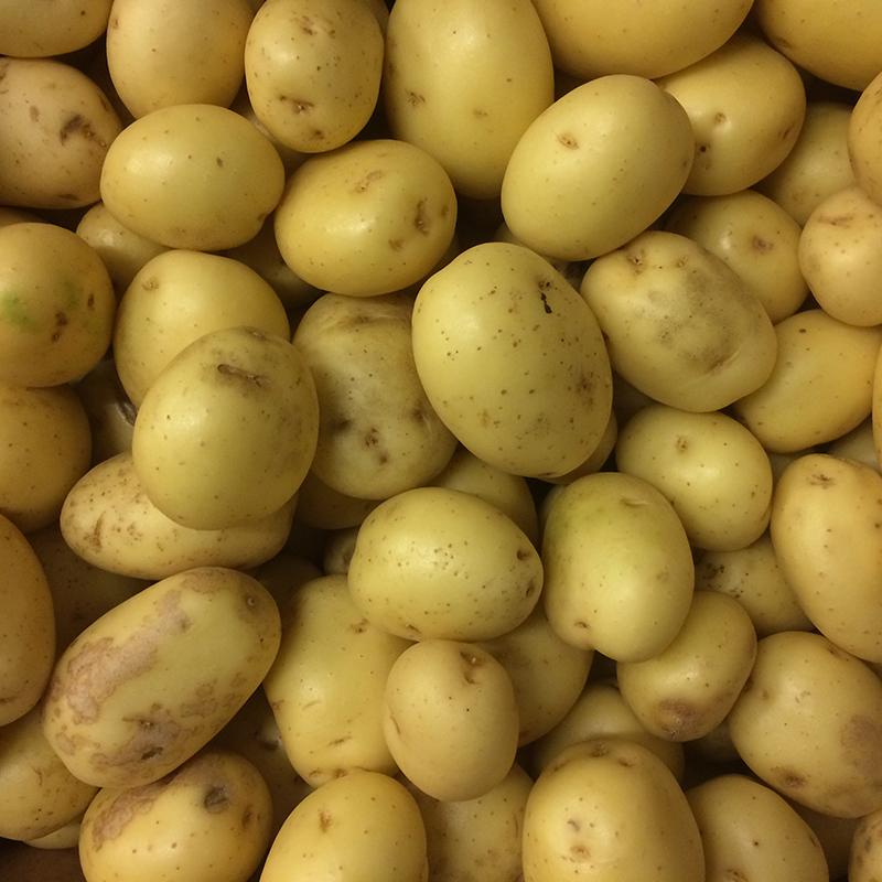 fresh vegetables speyfruit online ordering baby roasters