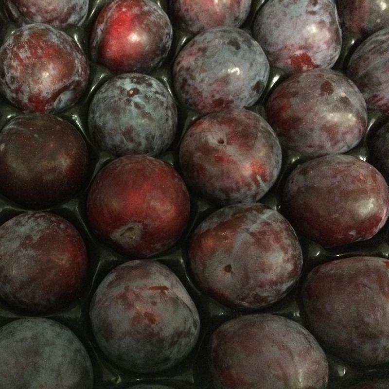 fresh fruit speyfruit online ordering plums