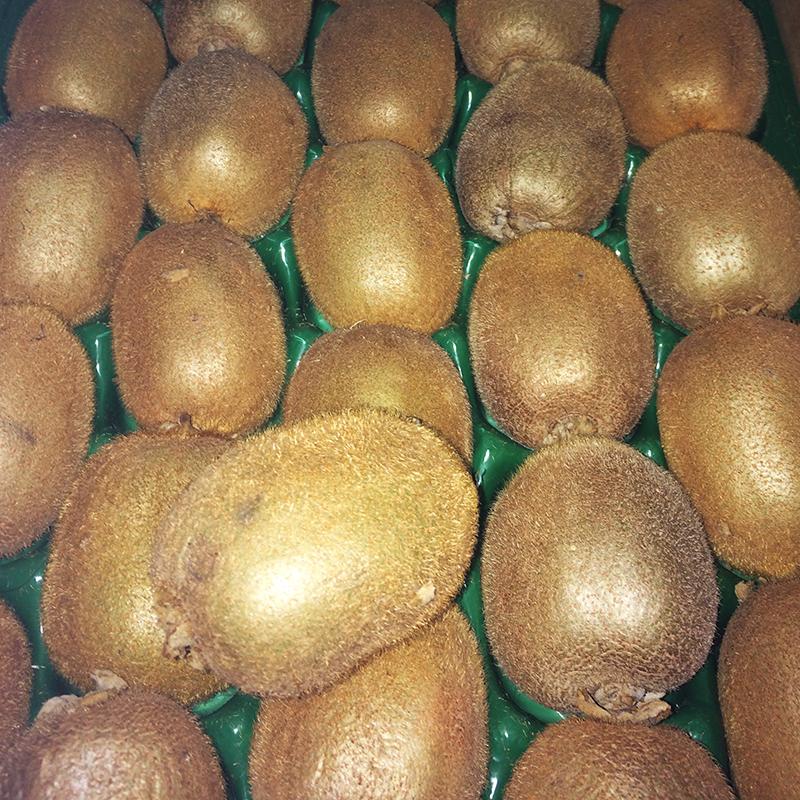 Kiwi fruits, buy online Speyfruit Moray, Scotland