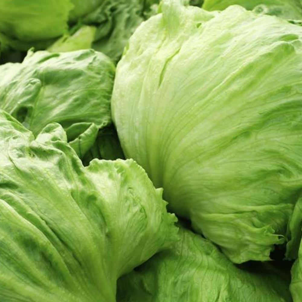 fresh vegetables speyfruit online ordering iceberg lettuce