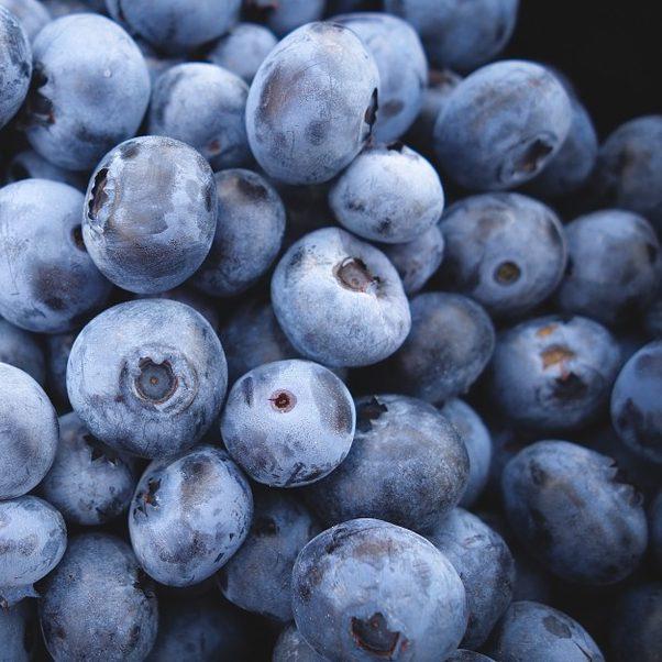 Blueberries for sale online, wholesale, retail, Moray, Scotland