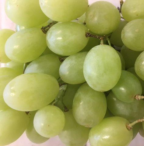fresh fruit speyfruit online ordering White grapes,