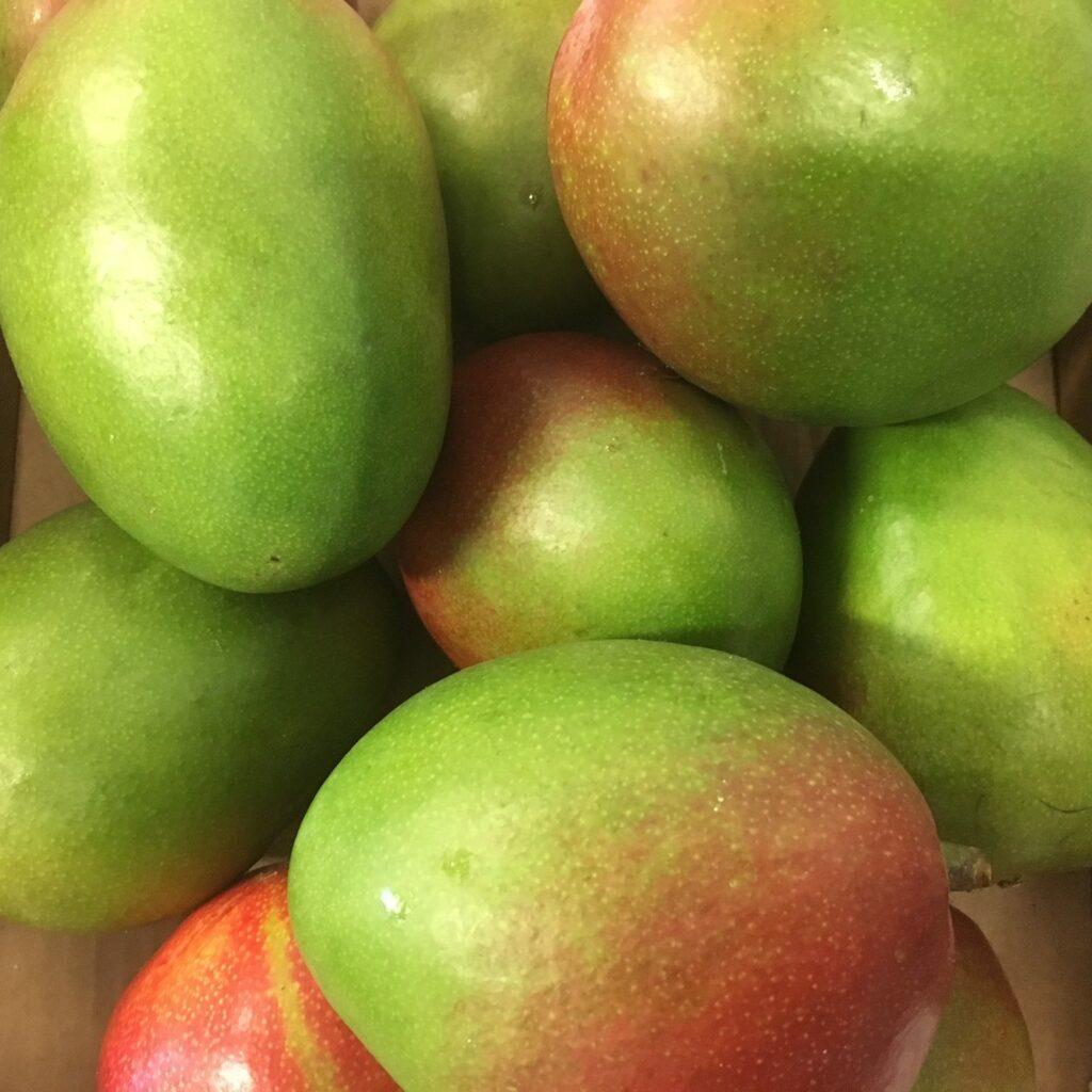 fresh fruit speyfruit online ordering Mangoes