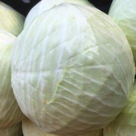 fresh vegetables speyfruit online white cabbage