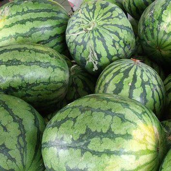 fresh fruit speyfruit online ordering Watermelon