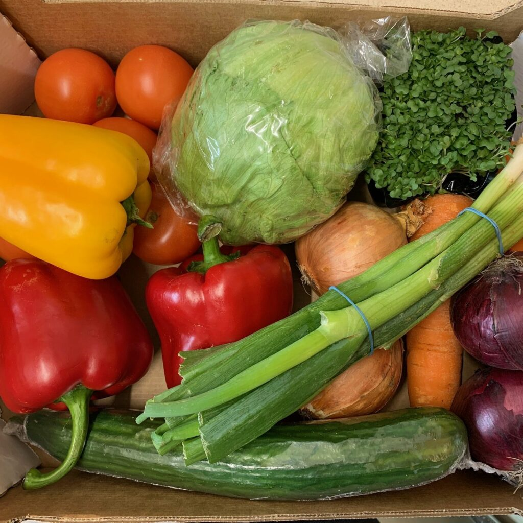 salad box speyfruit moray